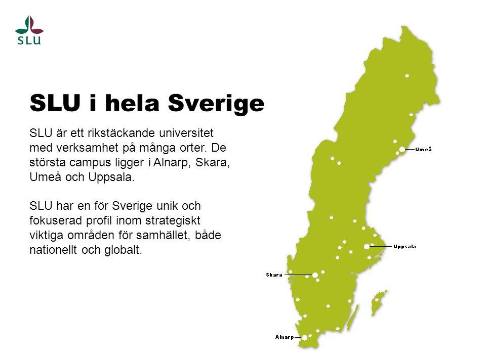 SLU är ett rikstäckande universitet med verksamhet på många orter. De största campus ligger i Alnarp, Skara, Umeå och Uppsala. SLU har en för Sverige