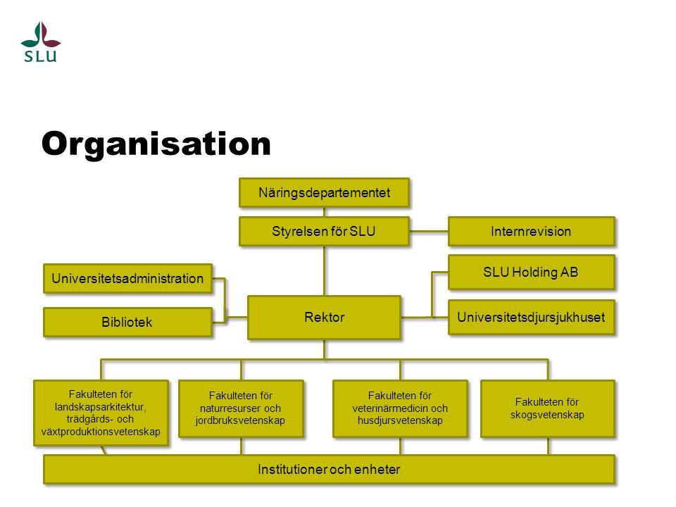 Organisation Näringsdepartementet Internrevision Styrelsen för SLU Institutioner och enheter Universitetsadministration Bibliotek Fakulteten för lands