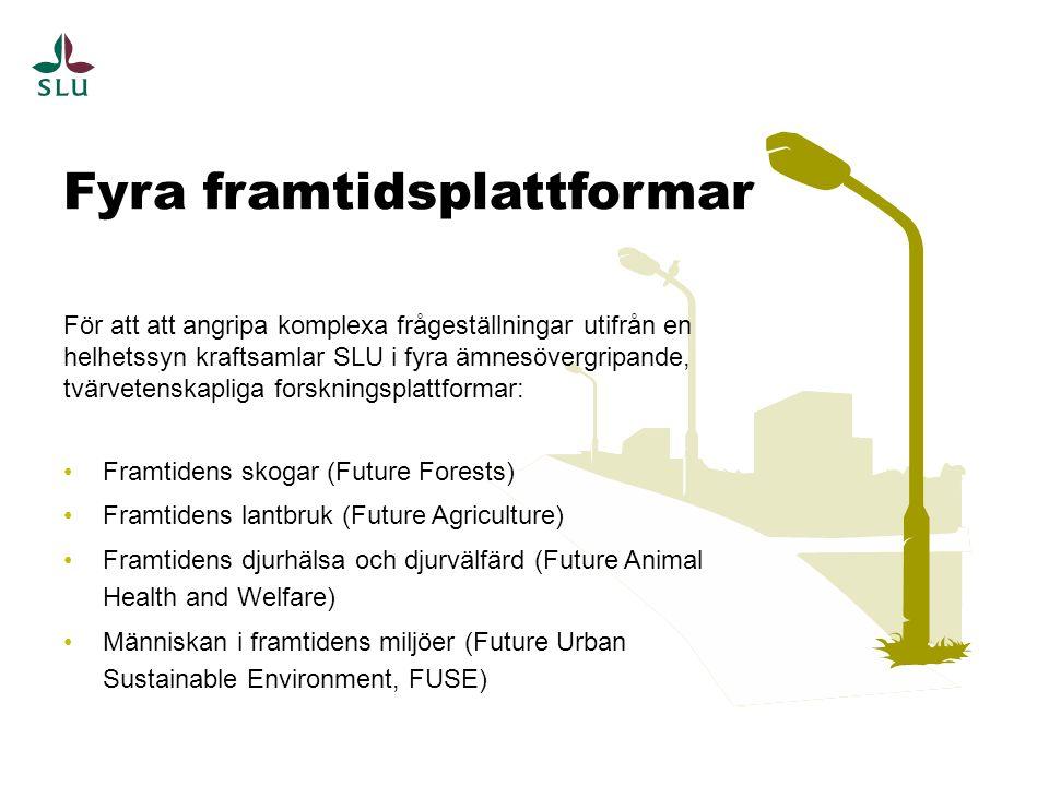 För att att angripa komplexa frågeställningar utifrån en helhetssyn kraftsamlar SLU i fyra ämnesövergripande, tvärvetenskapliga forskningsplattformar: Framtidens skogar (Future Forests) Framtidens lantbruk (Future Agriculture) Framtidens djurhälsa och djurvälfärd (Future Animal Health and Welfare) Människan i framtidens miljöer (Future Urban Sustainable Environment, FUSE) Fyra framtidsplattformar