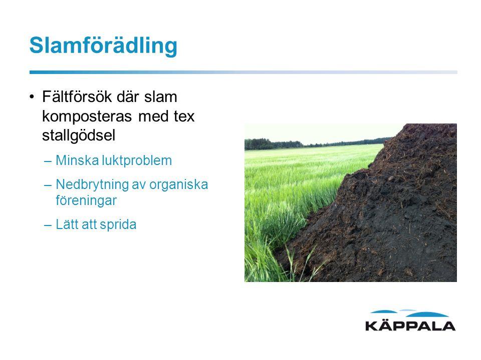 Slamförädling Fältförsök där slam komposteras med tex stallgödsel –Minska luktproblem –Nedbrytning av organiska föreningar –Lätt att sprida