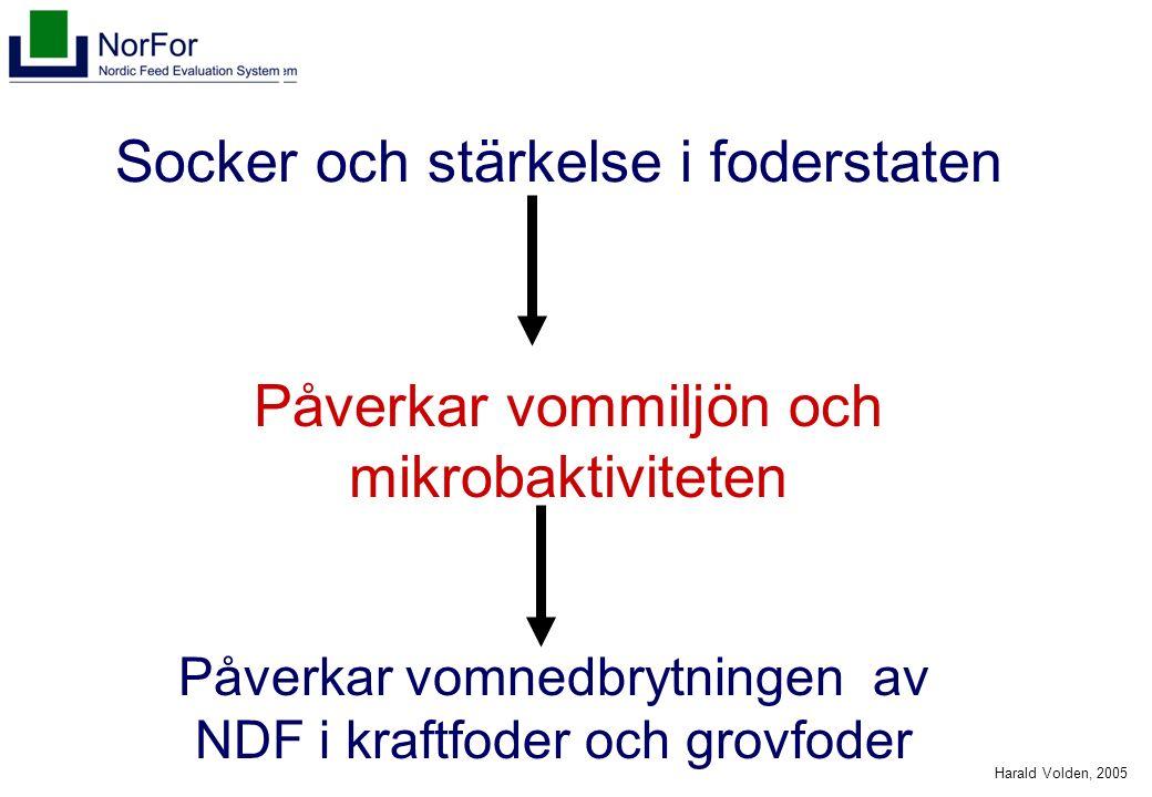 Harald Volden, 2005 Socker och stärkelse i foderstaten Påverkar vommiljön och mikrobaktiviteten Påverkar vomnedbrytningen av NDF i kraftfoder och grov