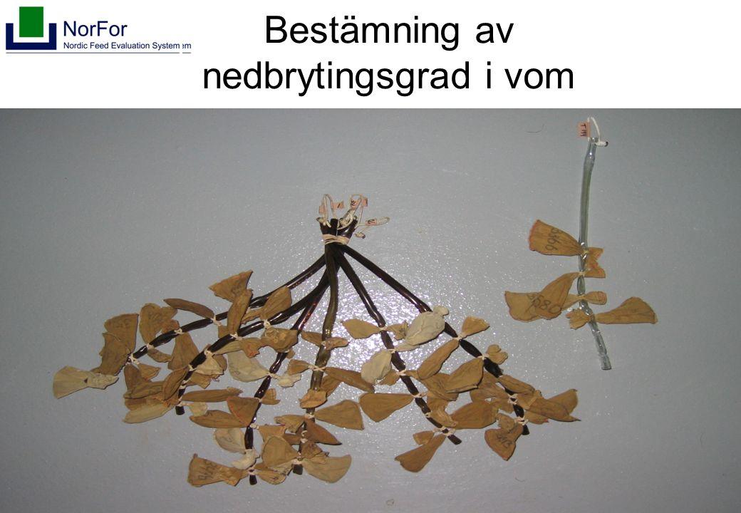 Harald Volden, 2005 Bestämning av nedbrytingsgrad i vom