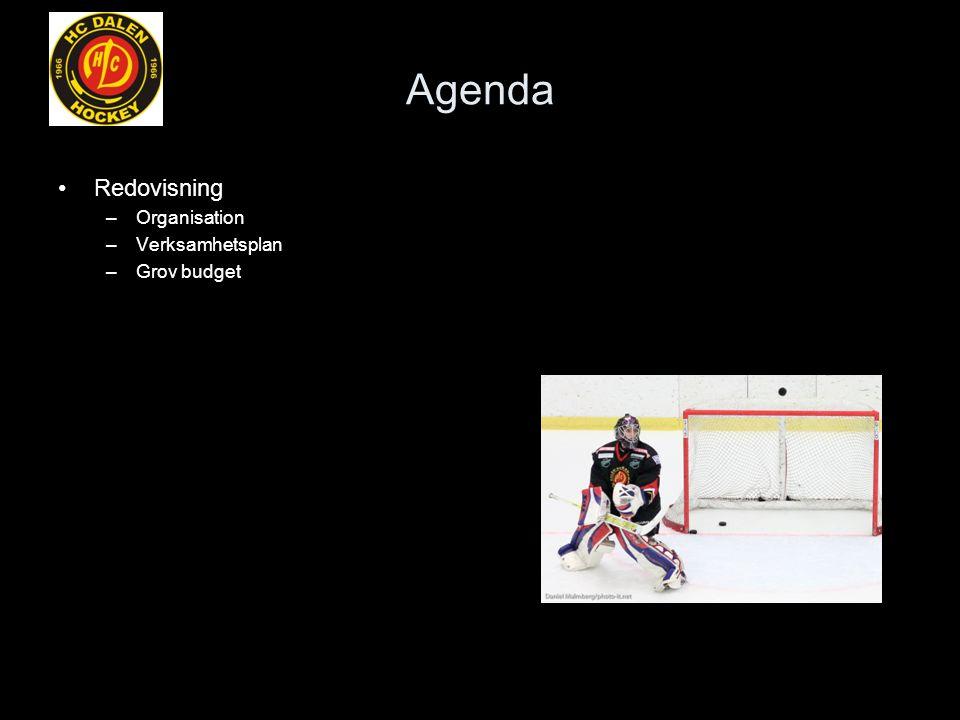 Agenda Redovisning –Organisation –Verksamhetsplan –Grov budget