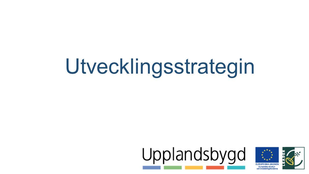 Utvecklingsstrategin