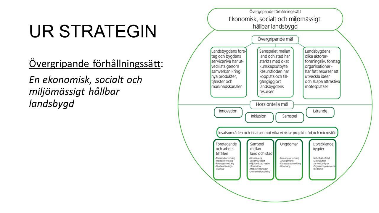 UR STRATEGIN Övergripande förhållningssätt: En ekonomisk, socialt och miljömässigt hållbar landsbygd