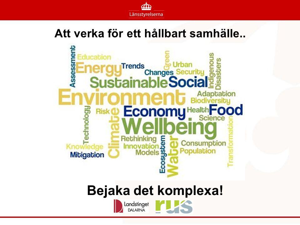 Att verka för ett hållbart samhälle.. Bejaka det komplexa!