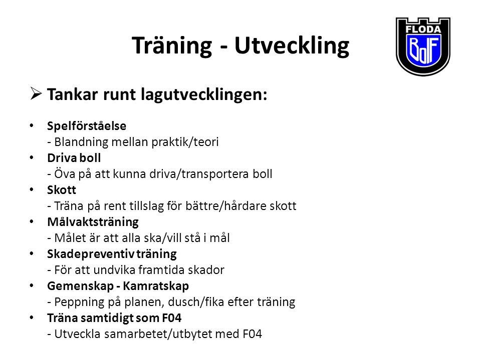 Seriespel Västergötland: Division 7 - Ett blandlag med tjejer från F04 & F05 Göteborg: Flickor 11(05) Vår - Ett lag med tjejer från F05  Vi har i dagsläget inga datum när serierna startar, troligen slutet april el.