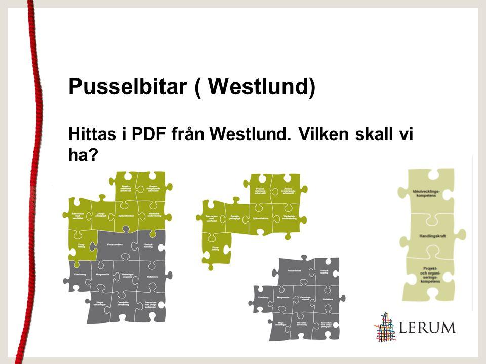 Pusselbitar ( Westlund) Hittas i PDF från Westlund. Vilken skall vi ha?