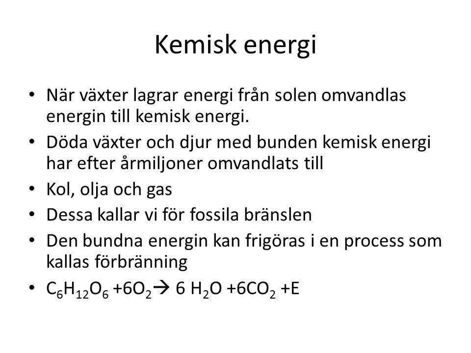 Kemisk energi När växter lagrar energi från solen omvandlas energin till kemisk energi. Döda växter och djur med bunden kemisk energi har efter årmilj