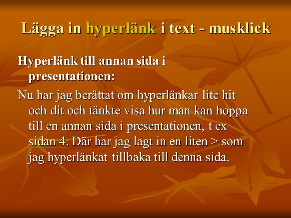 Lägga in hyperlänk i text - musklick Hyperlänk till Internet: I morse läste jag DN och glömde titta hur det gick i bandyn för Bollnäs… Men med ett enkelt klick kan alla se det nu.