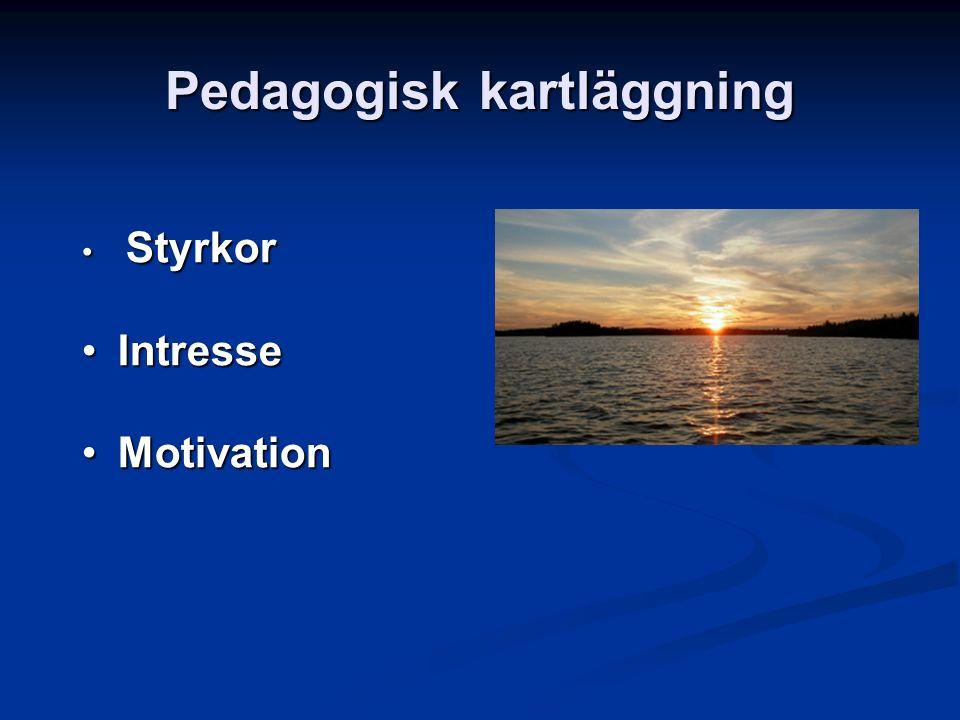 Pedagogisk kartläggning Styrkor Styrkor IntresseIntresse MotivationMotivation