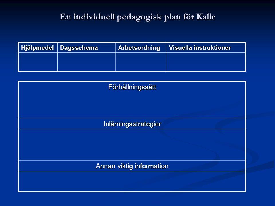 En individuell pedagogisk plan för Kalle Förhållningssätt Inlärningsstrategier Annan viktig information HjälpmedelDagsschemaArbetsordning Visuella ins