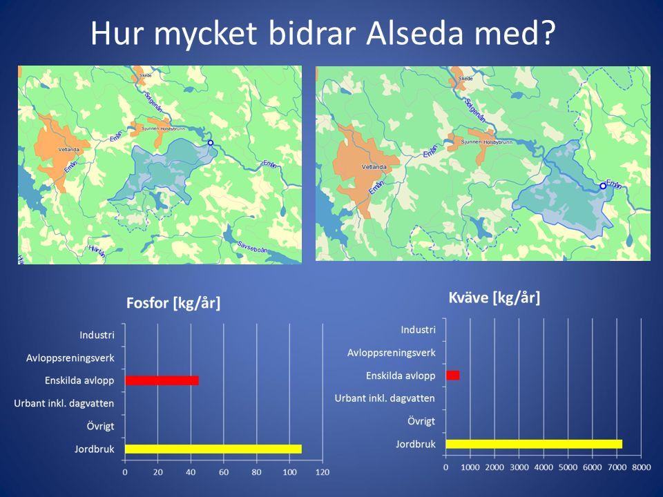 Hur mycket bidrar Alseda med
