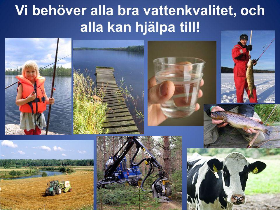 Vi behöver alla bra vattenkvalitet, och alla kan hjälpa till!
