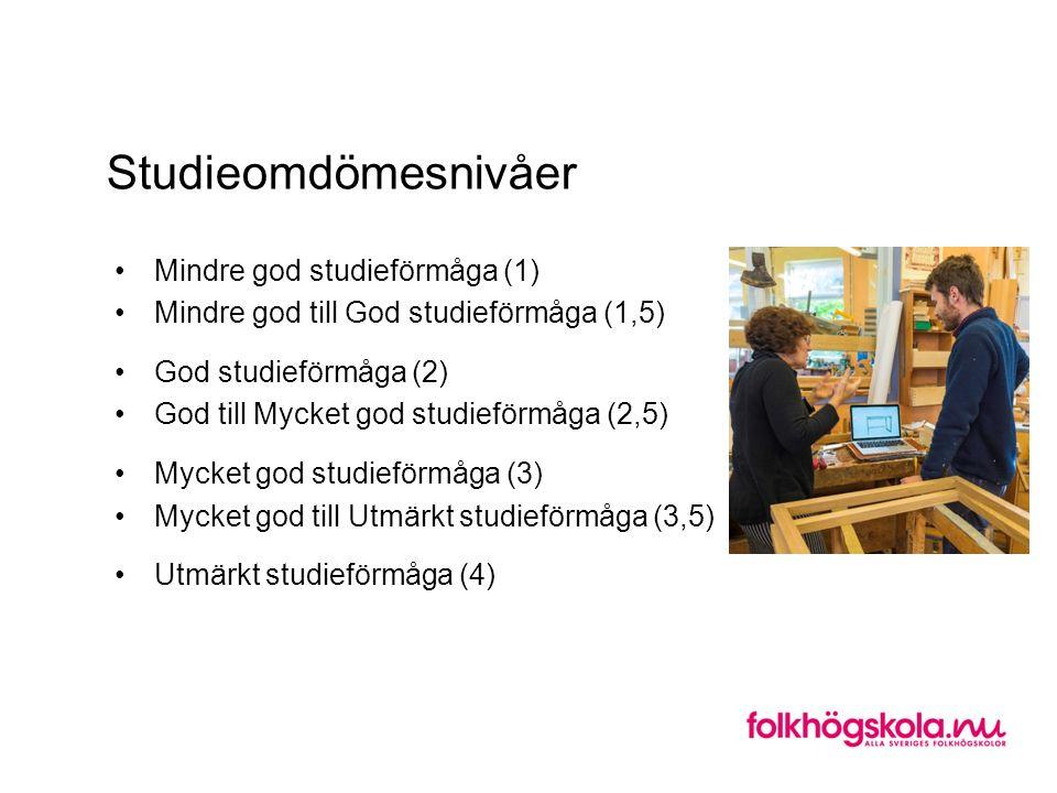 Studieomdömesnivåer Mindre god studieförmåga (1) Mindre god till God studieförmåga (1,5) God studieförmåga (2) God till Mycket god studieförmåga (2,5) Mycket god studieförmåga (3) Mycket god till Utmärkt studieförmåga (3,5) Utmärkt studieförmåga (4)