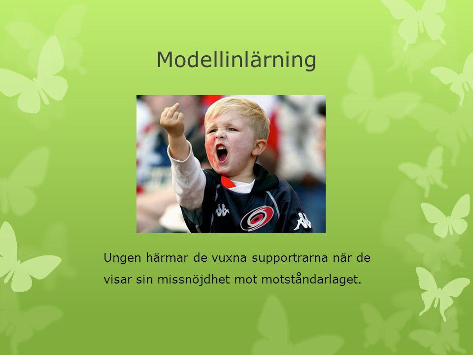 Modellinlärning Ungen härmar de vuxna supportrarna när de visar sin missnöjdhet mot motståndarlaget.