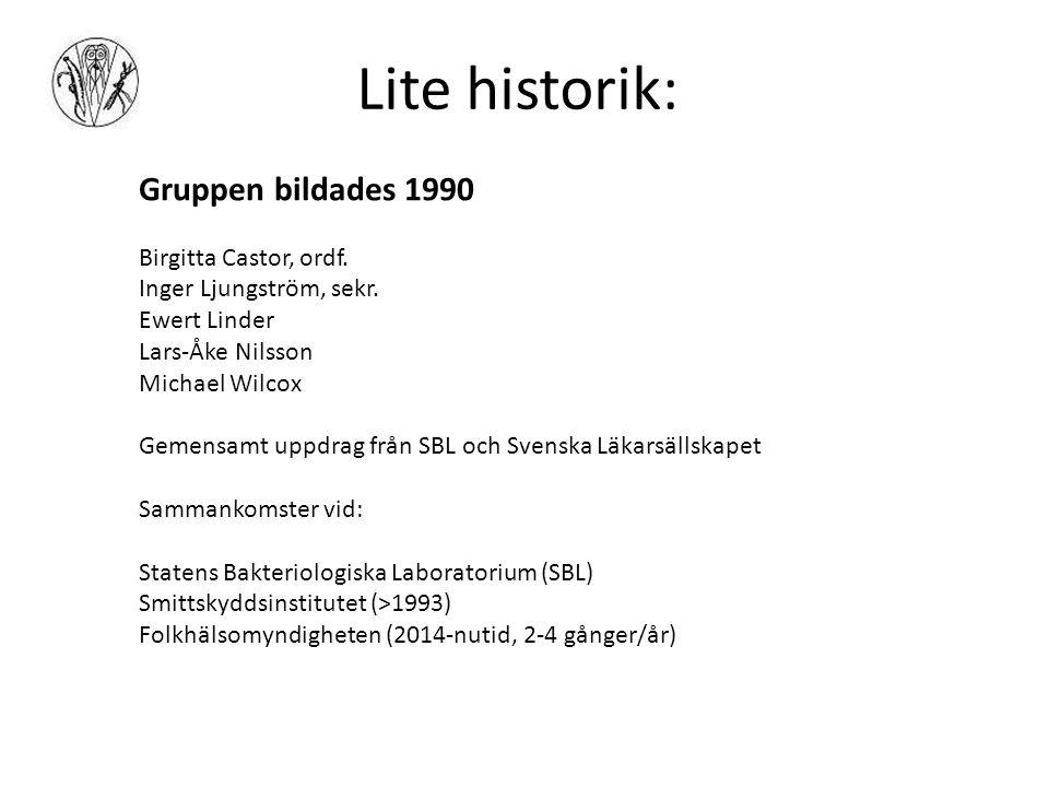 Lite historik: Gruppen bildades 1990 Birgitta Castor, ordf.