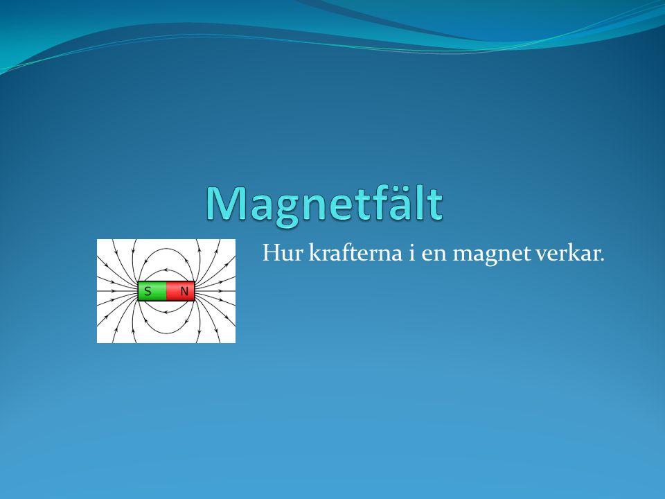 Hur krafterna i en magnet verkar.