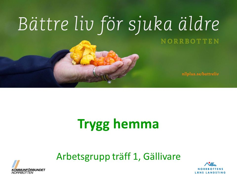Arbetsgrupp Trygg hemma Gällivare 24/9, 5/10, 21/10, 11/11 och 2/12 NamnProfessionArbetsplats E-post Lena Lantto NHandläggareBiståndsenhetenlena.lantto-nensen@gallivare.se Anna Olausson Ssk Hemsjukvården anna.olausson@gallivare.se Karin Byyssk Hemsjukvården karin.byy@gallivare.se Carolin Kuoppa-Mämmi Fysioterapeut Hemsjukvården carolin.kuoppa-mammi@gallivare.se Maria Johansson Ht område 1 Mbgt mormar66@hotmail.com Karin Olsson Ht område 2 Alliansen kajsa.n72@hotmail.com Marie Heneskär HT område 3 City Gve och nattpatrull mariehene@hotmail.com Paulina Entin HT område 4 hakkas, Ullatti, Dokkas/Nilivaara yretyre@hotmail.com Lotta Karlsson HT område 5 östra Gve, Nattavaara rockybella@hotmail.com Anna-Karin Isaksson HT område 6 Centrum Gve och Skaulo anki.isaksson@hotmail.com Susanne Törnlindusk Socialpsykiatrin Rickard Ljungusk Socialpsykiatrin Rickard.ljung@gallivare.se Jan Vesterlundskötare Psykiatrin Gällivare Jan.vesterlund@nll.se Jenny RindelövSsk HC Laponia Jenny.rindelov@nll.se Helena LarssonSskHC Laponiahelena.r.larsson@nll.se Katarina MickelssonSskAdviva Mia FyrénArbetsterapeut Adviva mia@adviva.se