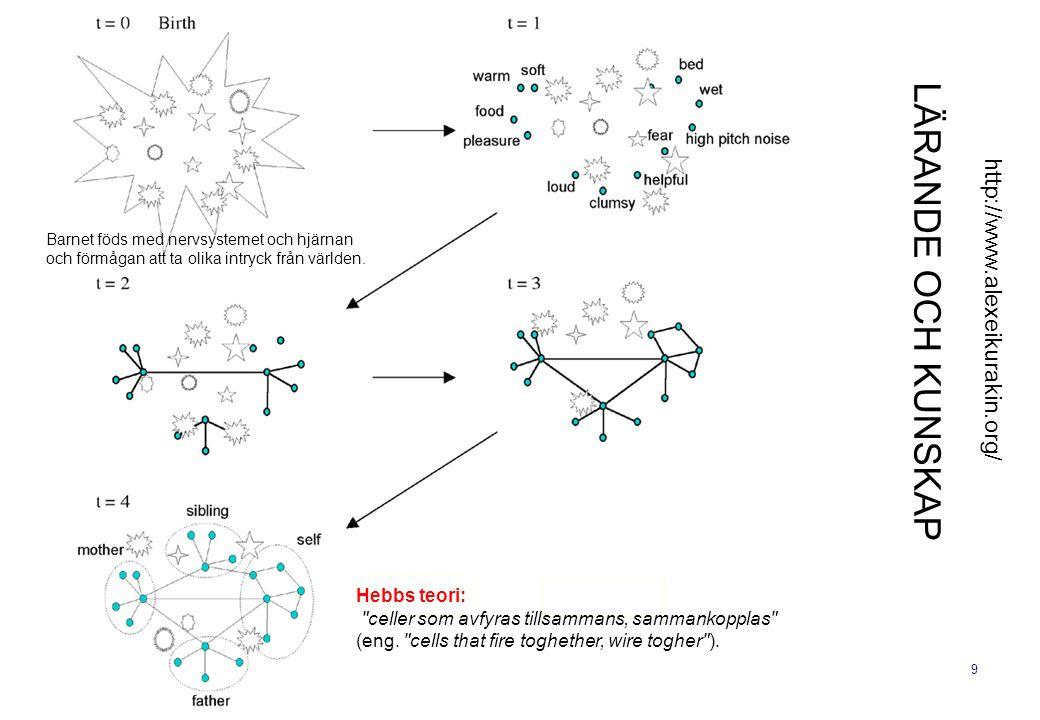 9 LÄRANDE OCH KUNSKAP http://www.alexeikurakin.org/ Hebbs teori: celler som avfyras tillsammans, sammankopplas (eng.