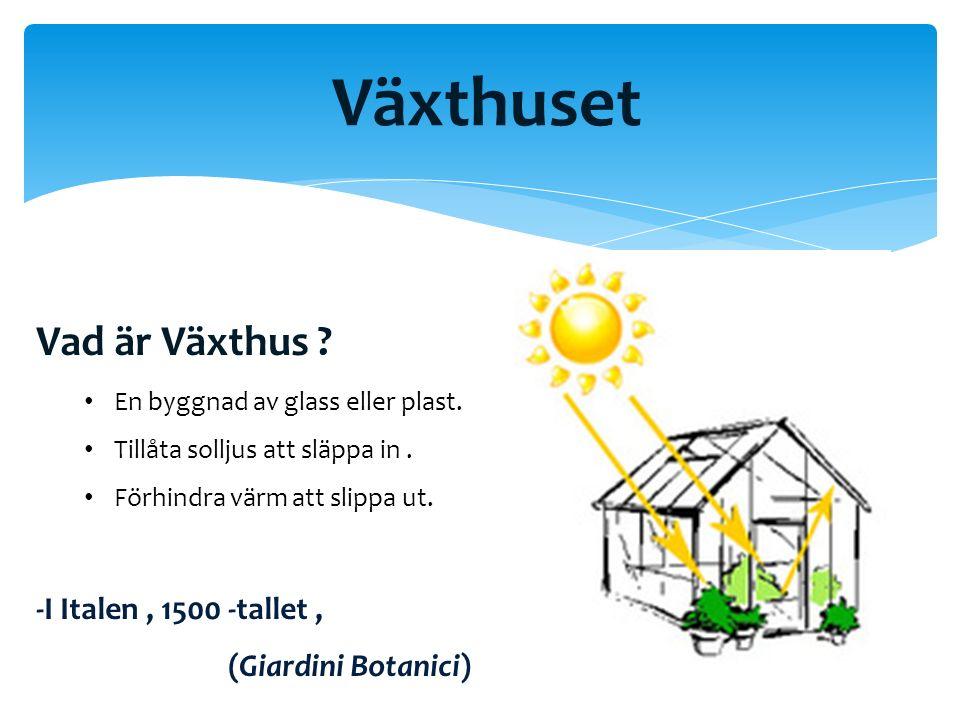 Växthuset Vad är Växthus . En byggnad av glass eller plast.