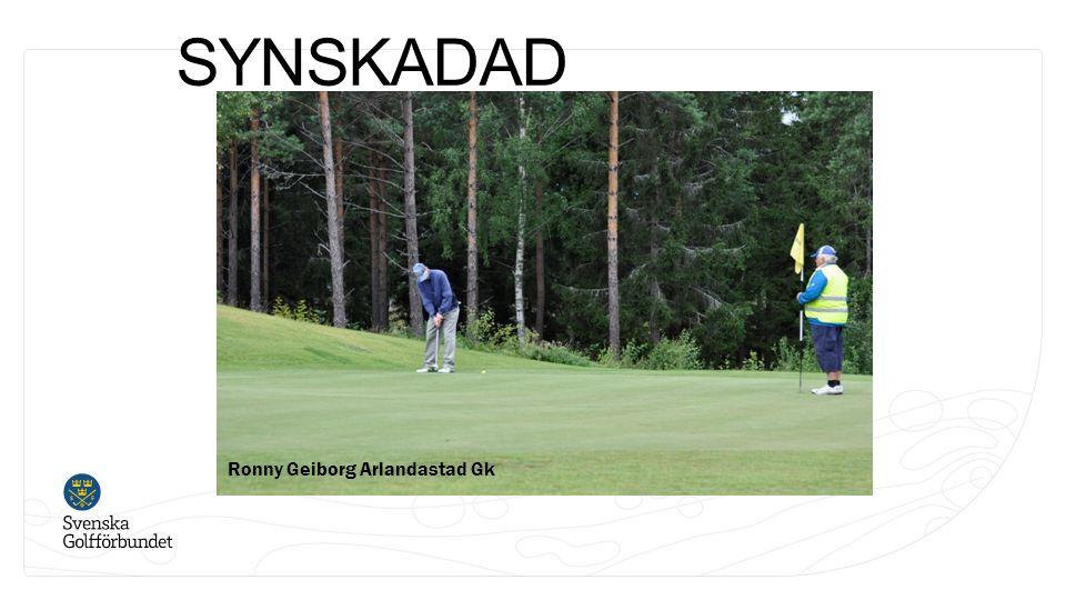 SYNSKADAD Ronny Geiborg Arlandastad Gk