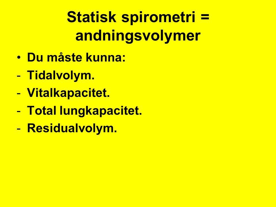 Statisk spirometri = andningsvolymer Du måste kunna: -Tidalvolym.
