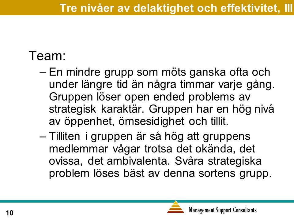 Management Support Consultants 10 Tre nivåer av delaktighet och effektivitet, III Team: –En mindre grupp som möts ganska ofta och under längre tid än några timmar varje gång.