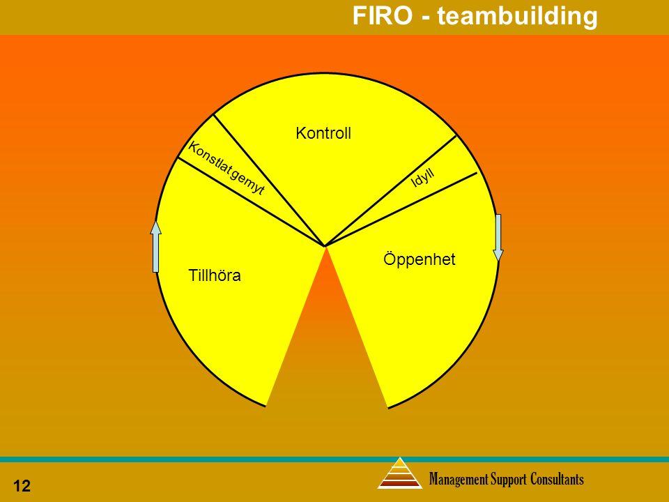 Management Support Consultants 12 FIRO - teambuilding Tillhöra Kontroll Öppenhet Idyll Konstlat gemyt