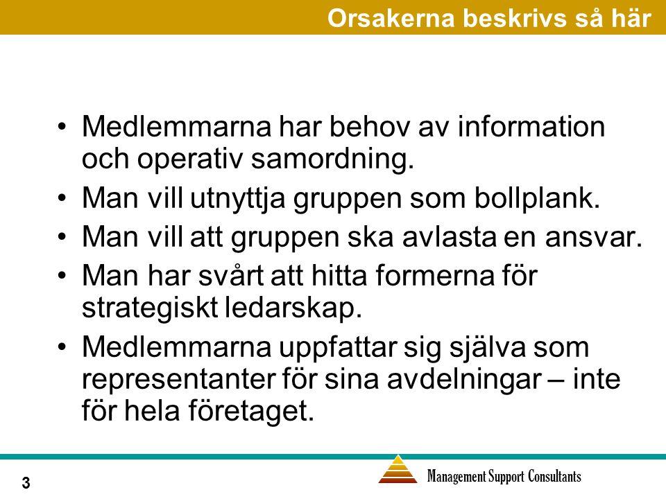 Management Support Consultants 3 Orsakerna beskrivs så här Medlemmarna har behov av information och operativ samordning.
