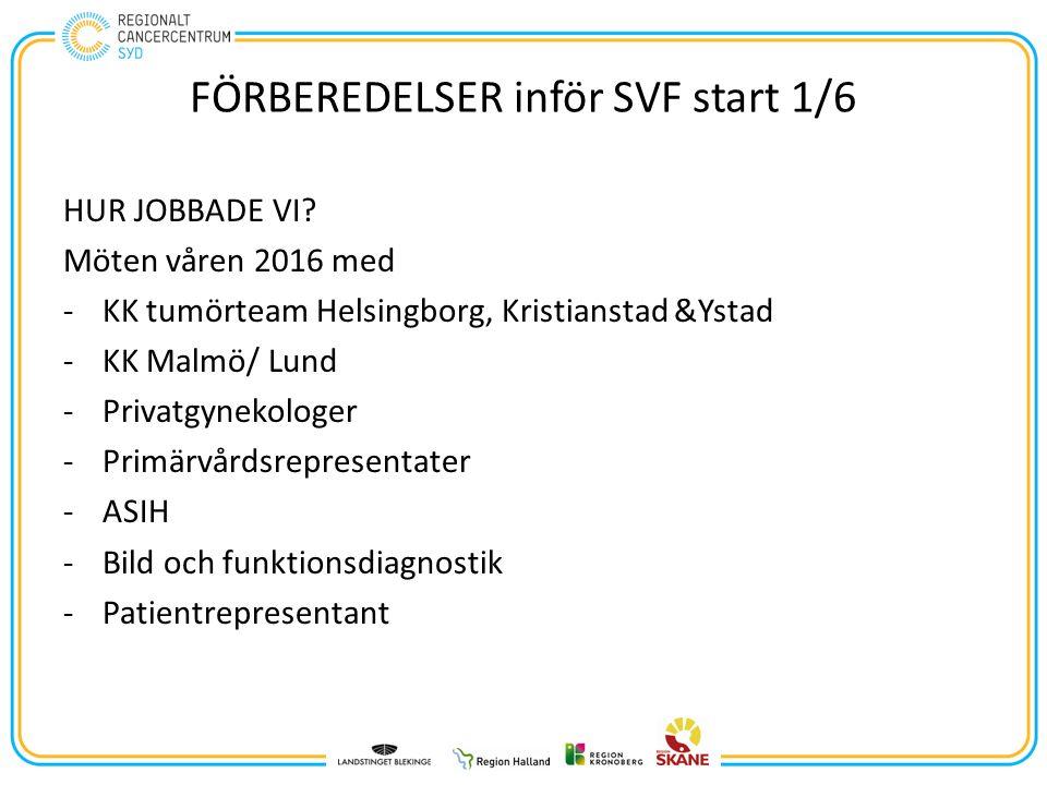 FÖRBEREDELSER inför SVF start 1/6 HUR JOBBADE VI.