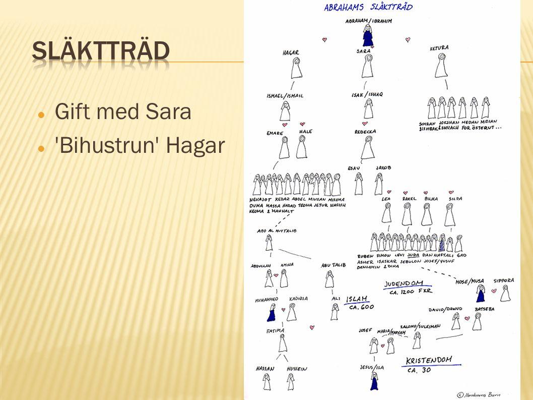 Gift med Sara 'Bihustrun' Hagar