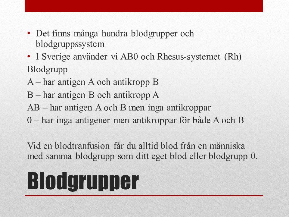 Blodgrupper Det finns många hundra blodgrupper och blodgruppssystem I Sverige använder vi AB0 och Rhesus-systemet (Rh) Blodgrupp A – har antigen A och