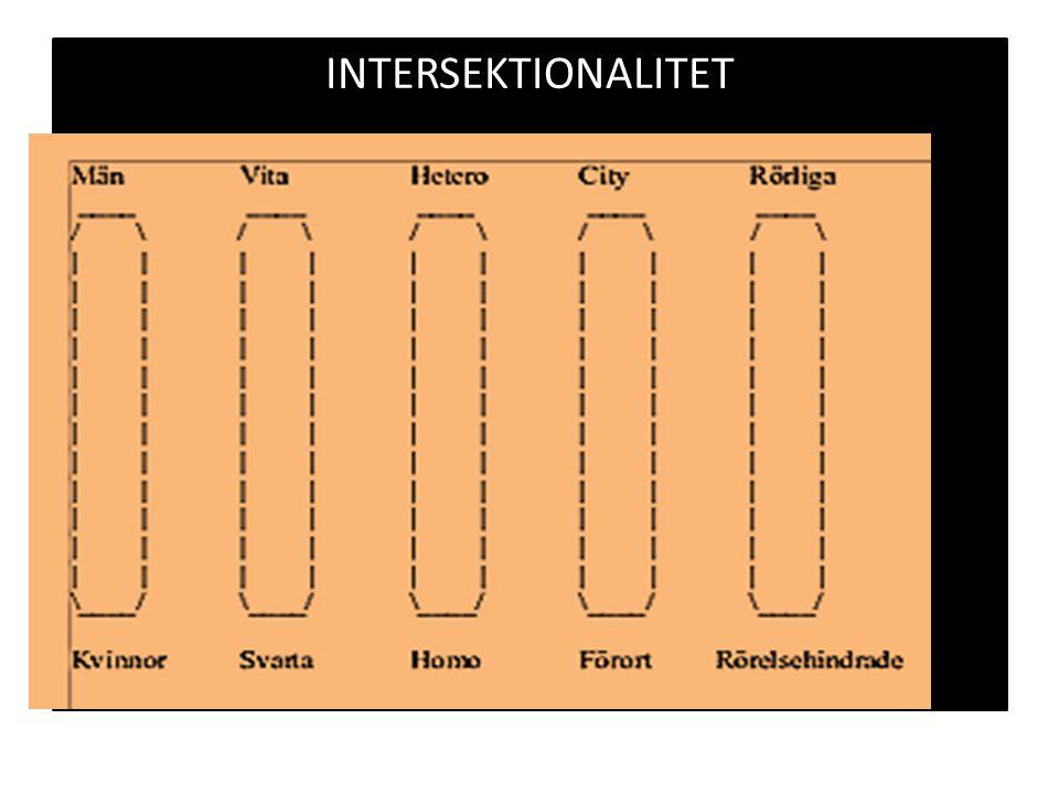 Intersektionalitet Man,svensk, övre medelklass Kvinna, Svensk, Övre medelklass Kvinna, sydeuropa, arbetarklass Kvinna,mellanöstern,arbetslös Man,arbetarklass Man,invanrare, arbetslös