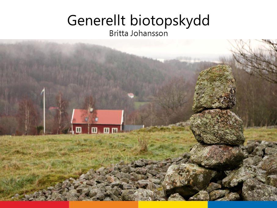 Varför generellt biotopskydd.Biologisk mångfald Ekosystemtjänster- pollination bl.a.