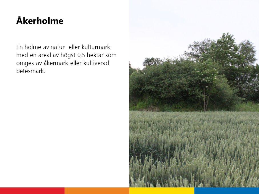 Åkerholme En holme av natur- eller kulturmark med en areal av högst 0,5 hektar som omges av åkermark eller kultiverad betesmark.
