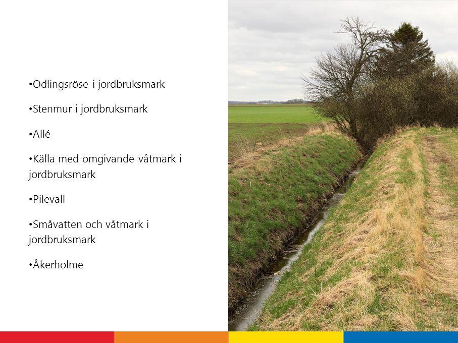 Odlingsröse i jordbruksmark Stenmur i jordbruksmark Allé Källa med omgivande våtmark i jordbruksmark Pilevall Småvatten och våtmark i jordbruksmark Åkerholme