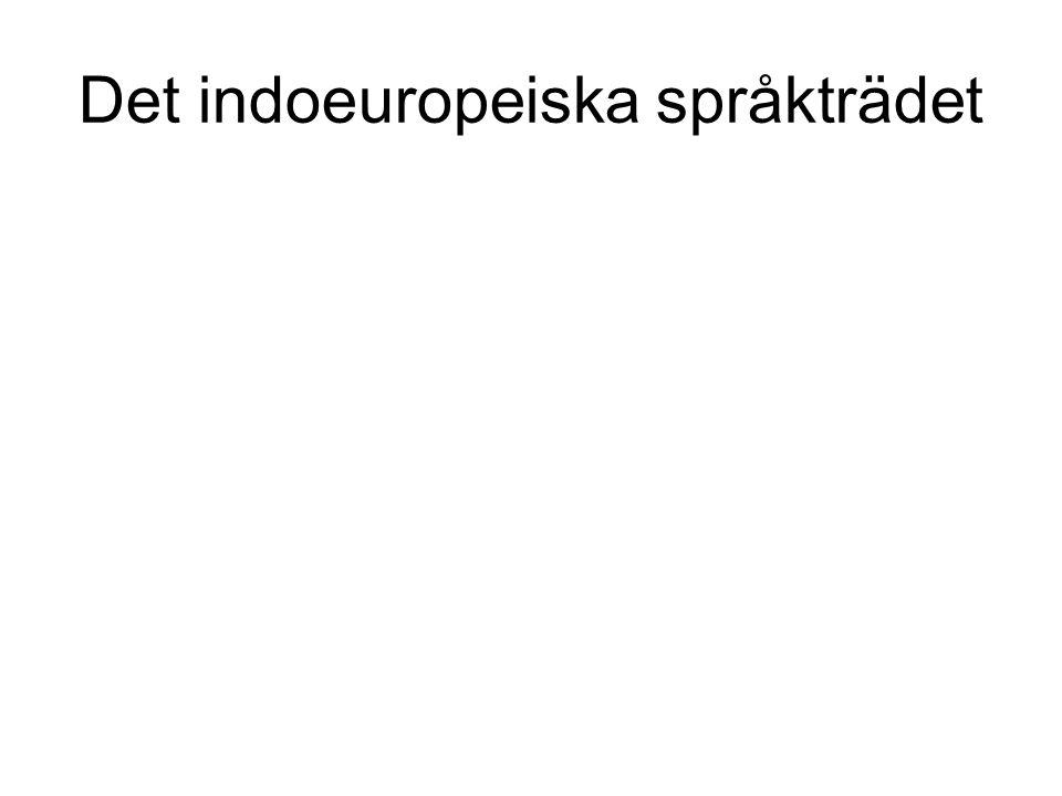 Det indoeuropeiska språkträdet