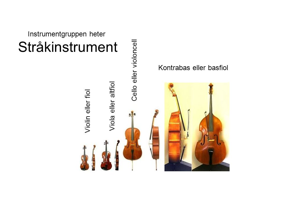 Kontrabas eller basfiol Instrumentgruppen heter Stråkinstrument Violin eller fiol Viola eller altfiol Cello eller violoncell