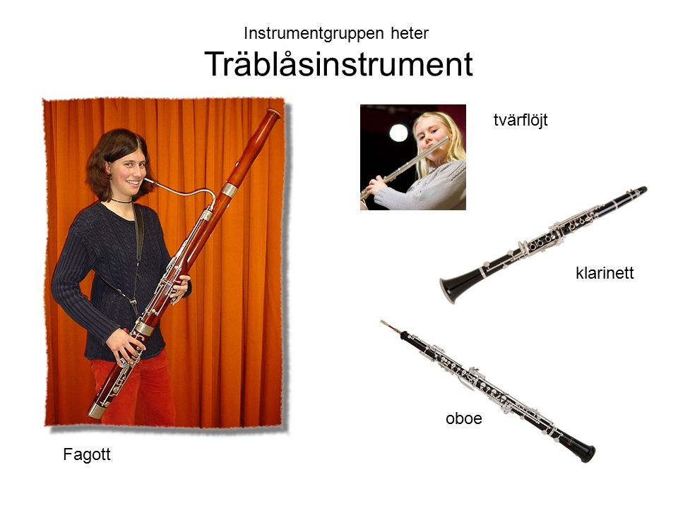 Instrumentgruppen heter Träblåsinstrument Fagott tvärflöjt klarinett oboe