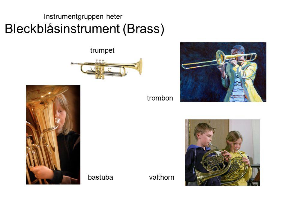 trumpet trombon bastubavalthorn Instrumentgruppen heter Bleckblåsinstrument (Brass)