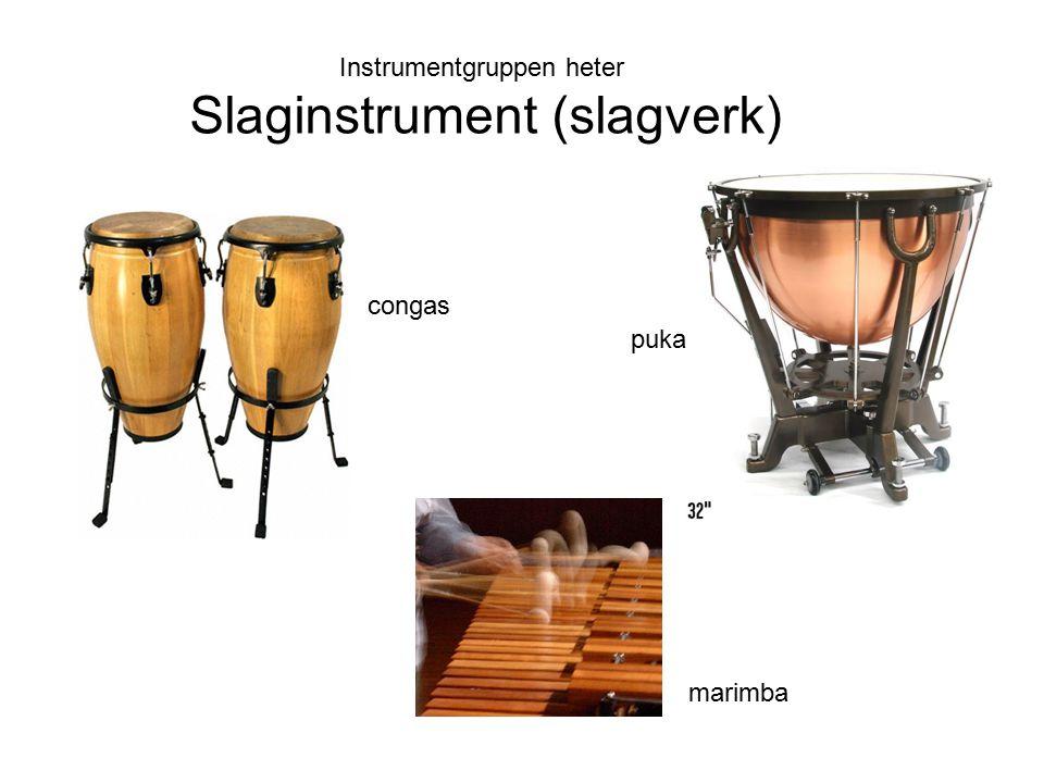 Instrumentgruppen heter Slaginstrument (slagverk) puka marimba congas
