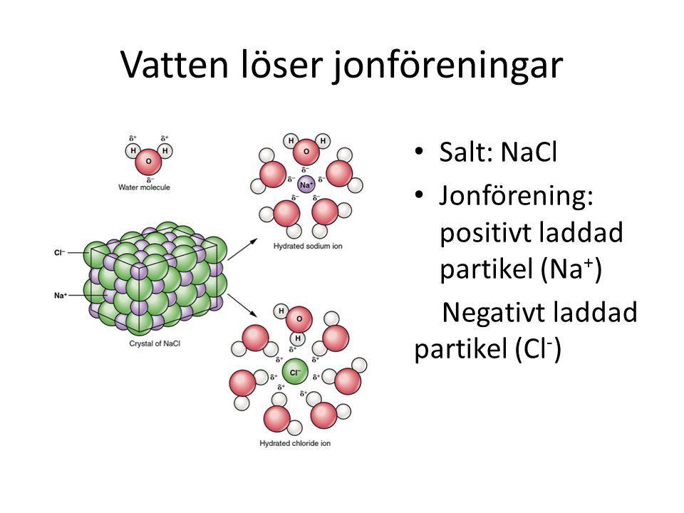 Vatten löser jonföreningar Salt: NaCl Jonförening: positivt laddad partikel (Na + ) Negativt laddad partikel (Cl - )