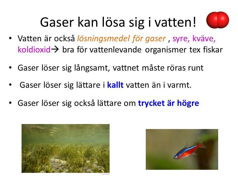 Gaser kan lösa sig i vatten.