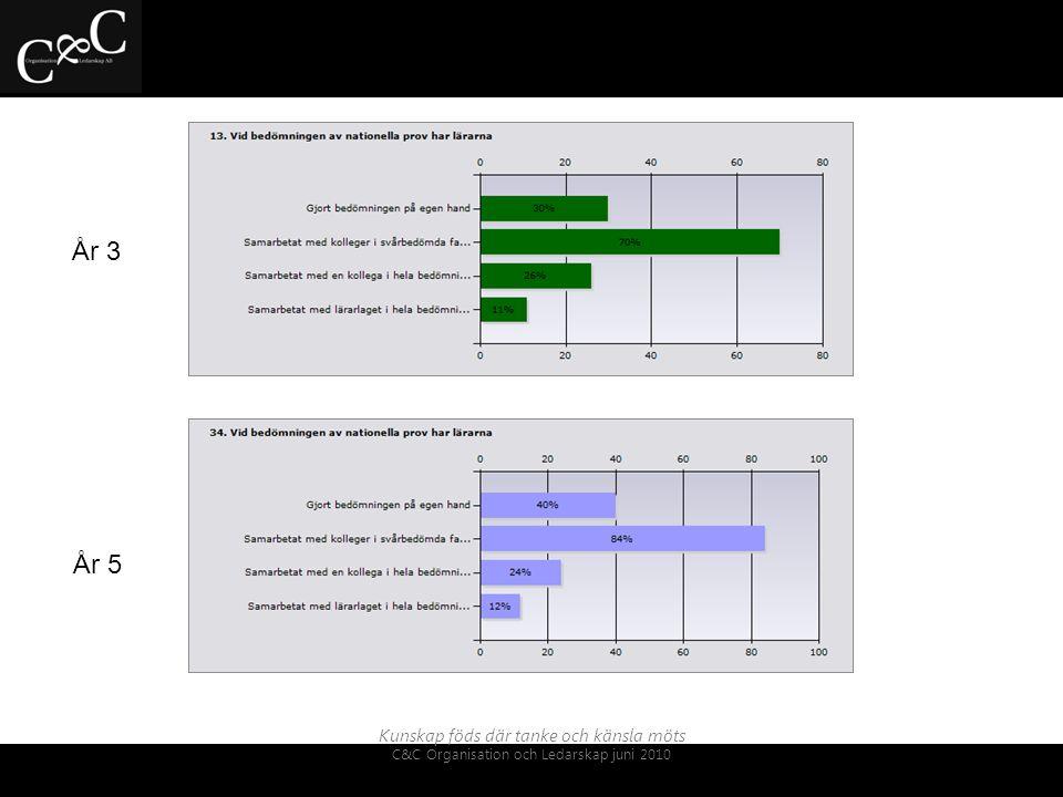 Kunskap föds där tanke och känsla möts C&C Organisation och Ledarskap juni 2010 Analysen visar olika mönster