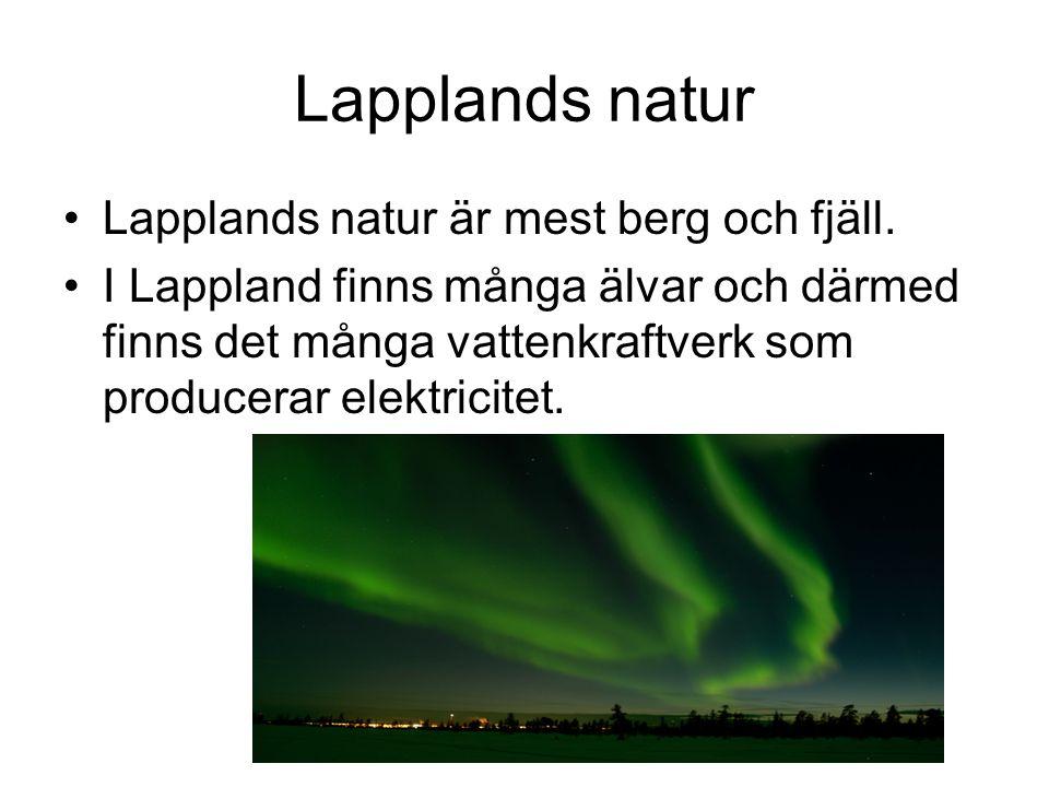 Lapplands natur •Lapplands natur är mest berg och fjäll. •I Lappland finns många älvar och därmed finns det många vattenkraftverk som producerar elekt