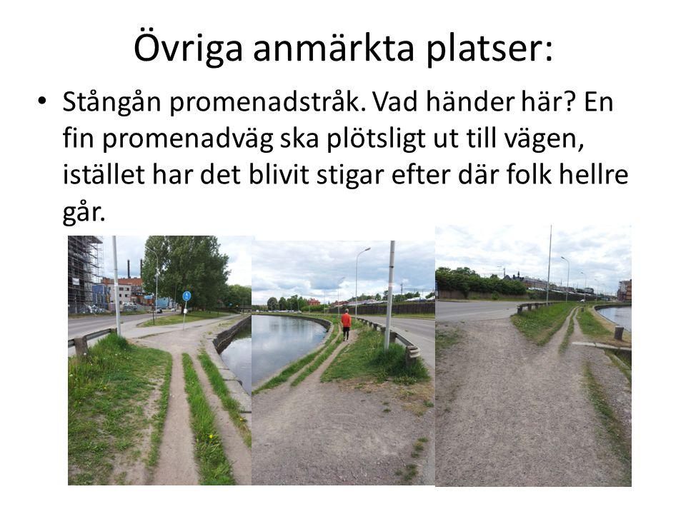 Övriga anmärkta platser: • Stångån promenadstråk. Vad händer här? En fin promenadväg ska plötsligt ut till vägen, istället har det blivit stigar efter
