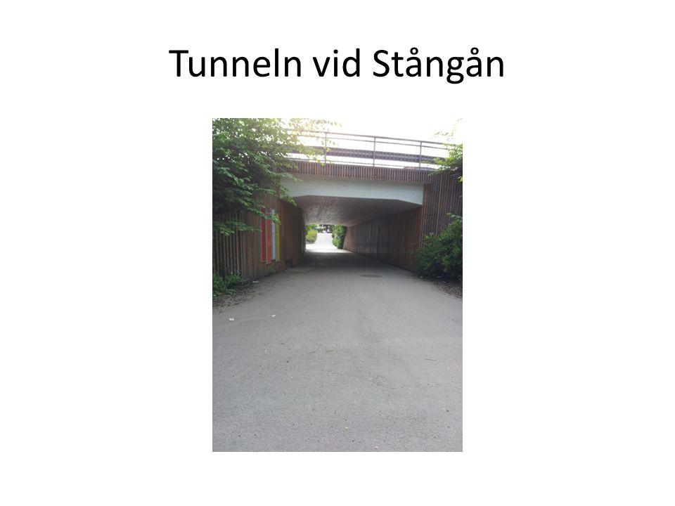 • Mellan Scandic och Anders Ljungstedts, parkområdet där är slitet och inte lockande.