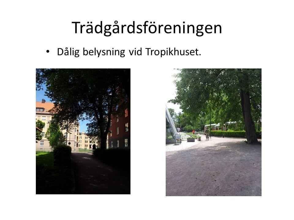 Trädgårdsföreningen • Dålig belysning vid Tropikhuset.