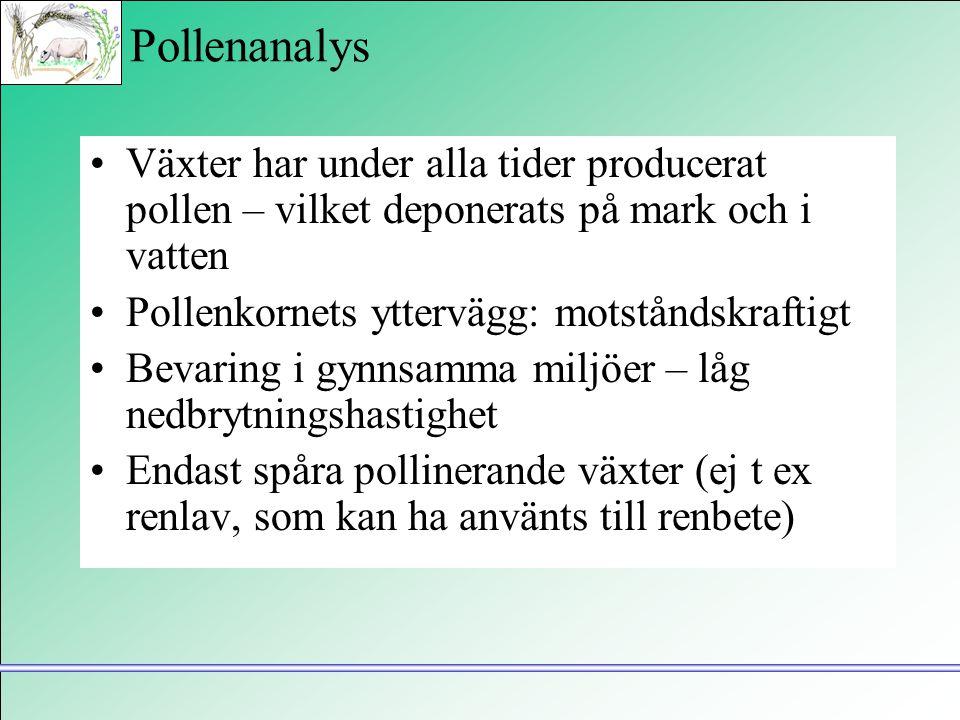 Pollenanalys •Växter har under alla tider producerat pollen – vilket deponerats på mark och i vatten •Pollenkornets yttervägg: motståndskraftigt •Beva